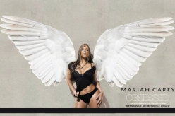 wp_angelo